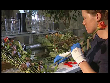 Hautschutz in Floristikbetrieben